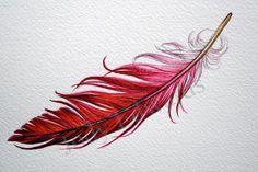 cardinal feather - idea for mamma and poppa tattoo. Kristin Winchester Alex E. - cardinal feather – idea for mamma and poppa tattoo….