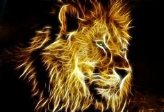 Outstanding Fractal African Male Lion.
