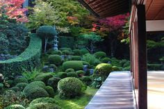 Sanzen-in Temple Kyoto a beautiful place to drink tea