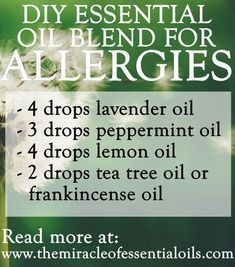 Make your own essential oil blend for allergies to get those runny noses, itchy skin and watery eyes under control! Some of the best essential oils for alle #asthmaandessentialoils