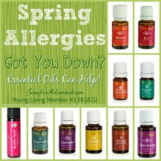 Spring Allergies - Young Living Essential Oils