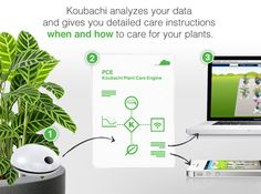 Make your hobby with plants, it is worth adding a plant sensor. One of the plant sensors is Koubachi Wi-Fi Plant Sensor