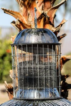how to keep grackles away from bird feeders