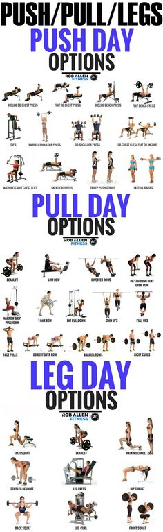 Push/Pull/Legs Weight Training Workout Schedule For 7 Days Do you want monster legs? Then look no further.here we have the push pull workout, this especially focuses on the different movement of your muscles and how you can r Fitness Workouts, 6 Pack Abs Workout, Weight Training Workouts, Workout Schedule, Training Schedule, Push Pull Workout Routine, Push Pull Legs Workout, Workout Plans, Push Workout