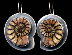 Jewelry: Earrings, Madagascar Ammonites, set in Sterling Silver, by Kay Seurat