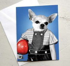 CHIHUAHUA Boy Greeting Card by ZyndiePop for $3.95