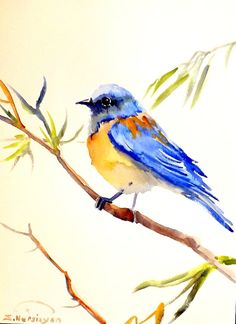 "ORIGINAL Bluebird watercolor painting 9""x12"" by Suren Nersisyan, on ETSY $24.00 Artist never sells prints or copies of his work. The artwork is truly OOAK!"