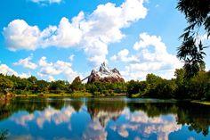 Disney's Animal Kingdom, picture by Hamilton Pytluk