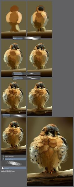 The little angry bird: painting step by step tutorial by XGingerWR on DeviantArt