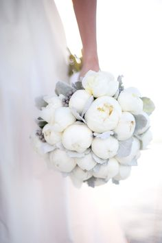 Simply stunning bouquet. White peonies and leaves of dusty miller.