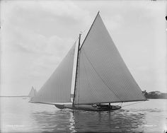 edb8fd0ff056e source: lazyjacks@tumbler. FREAK, 1892. Detroit Publishing Company  Photographic Collection. Classic YachtsSail ...