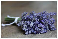 Lavendel grijs