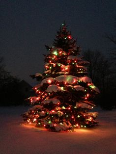 Beautiful Outdoor Christmas Lights Decoration Ideas - Fun, nourishment, family, presents and tangled Christmas lights are all things related to the Christmas season. The Christmas tree is constantly enjoy. Decorating With Christmas Lights, Outdoor Christmas Decorations, Light Decorations, Holiday Decor, Merry Christmas, Christmas Scenes, Christmas Holidays, Christmas Aesthetic, Christmas Wallpaper