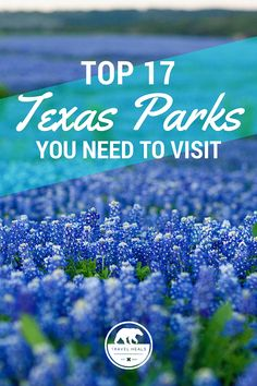 Top 17 Texas Parks You Need To Visit