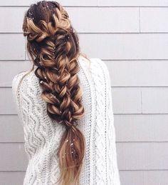 Hair braids : Photo