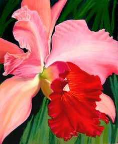Colourful red orchid from an original painted in pastel on Wallis paper