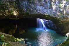 Natural Bridge is the jewel in the Gold Coast hinterland crown, a heavenly cave like rock formation in Springbrook National Park Natural Bridge Springbrook, Brisbane Attractions, Queenslander, Gold Coast, Day Trips, Great Places, Waterfall, National Parks, Places To Visit
