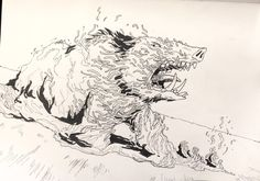Roar of the nightmare Boar by OliviaPaige010 on DeviantArt