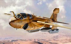 Grumman EA-6B Prowler (Vincenzo Auletta)