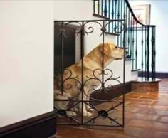 Doggy house under the stairs!  We need a home with stairs so we can do this, pretty cool idea!