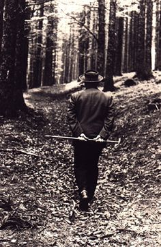 Shaun Kenaelly: Martin Heidegger Walks Through the Woods Literature Books, Book Authors, Gaia, Image Symbols, Martin Heidegger, Western Philosophy, Black Forest, Installation Art, Les Oeuvres