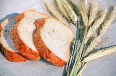 Are Whole Grains The Best Source of Fibre?  http://www.formulaforfatloss.com/grains-source-fibre/#