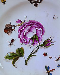 Detail of 1741-42 hand painted Meissen plate. Insects & beetles on the plate reflect the 18th century's great interest in the natural sciences. Lessing Photo Archive