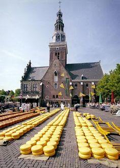 En el mercado de quesos de #Alkmaar se ven a los comerciantes evaluar la calidad de los quesos y pesarlos en las antiguas balanzas. http://www.viajaraamsterdam.com/ciudades-para-visitar/alkmaar/ #Holanda