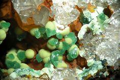Kidwellite (globulaire, crème) sur Chalcosiderite (verte). Les Montmins Mine, Échassières, Ébreuil, Allier, Auvergne, France FOV=4.3 mm Photo © Joachim Esche 2010
