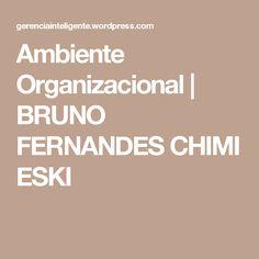 Ambiente Organizacional | BRUNO FERNANDESCHIMIESKI