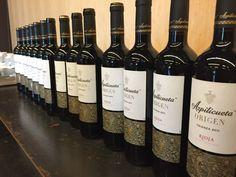 Visita de los alumnos del Basque Culinary Center a nuestra bodega con motivo del inicio del tercer #RetoAzpilicueta Wine Rack, Storage, Home Decor, Wine, Wine Cellars, Purse Storage, Decoration Home, Room Decor, Larger