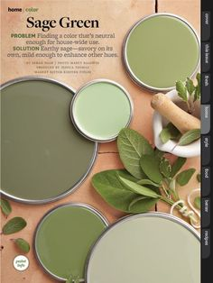 Better Homes and Garden - Sage green paint colors- I like Prairie sage for wall color Sage Green Paint, Green Paint Colors, Wall Colors, House Colors, Sage Green Bedroom, Green Sage, Sage Green Kitchen, Sage Green House, Green Metallic Paint