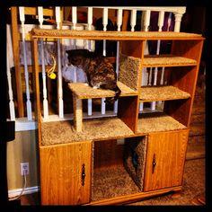 ! DIY Pet Entertainment Cat Tower Crafty Redo Reuse Repurpose