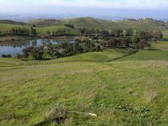 Ed Levin Park in Milpitas, California. Near my home in the foothills, and where I rode my mare TT.