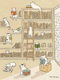 cats & books illustration