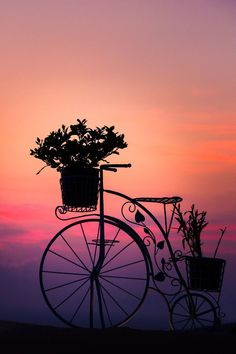 Bicycle Silhouette at Sunset Nature Wallpaper, Wallpaper Backgrounds, Wallpaper Ideas, Iphone Wallpapers, Silhouette Fotografie, Pretty Pictures, Cool Photos, Amazing Photography, Nature Photography