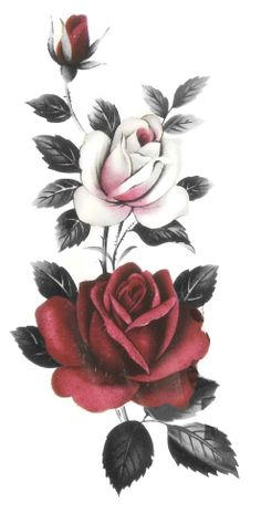 Reference from vintage plate. Reference from vintage plate. Rose Tattoos, Flower Tattoos, Art Floral, Rose Flower Wallpaper, Rose Art, Flower Tattoo Designs, Beautiful Roses, Vintage Flowers, Watercolor Flowers