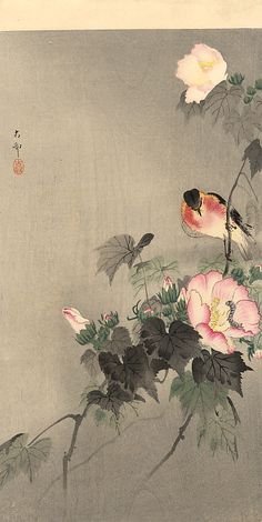 Stonechat and Blossoming Flower  Koson  Ca 1910.