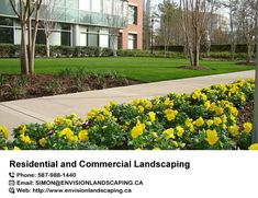 Envision Landscaping Company is an award-winning, #residential and #commercial #landscaping and maintenance company serving Edmonton, Sherwood Park, and local areas. For more detail visit on http://www.envisionlandscaping.ca/