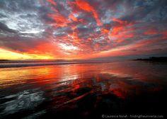 Sunset at Muriwai #travelpinspiration