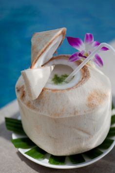 Four Seasons Resort Koh Samui offers a wide range of fine dining restaurants and bars serving a variety of cuisines from seafood to Mediterranean and more. Coconut Shake Recipe, Coconuts Beach, Coconut Drinks, Beach Meals, Food Fantasy, Order Food, Cute Food, Four Seasons, Fine Dining
