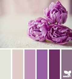 flora tones color palette color of the year 2014 Colour Pallette, Color Palate, Colour Schemes, Color Patterns, Color Combos, World Of Color, Color Of Life, Color Of The Year, Design Seeds