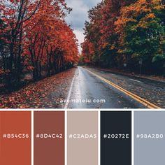 Color palettes 760052874596766461 - Color Palettes – Ave Mateiu Source by