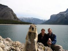 Squirrel photobomb.  I bet they only took one photo and did not realize this until after they got home - Bwahahaha