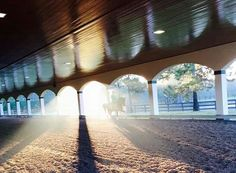 It doesn't matter how well you ride or how fancy your horse is, you will feel like royalty in this arena!