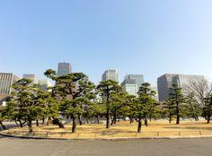Schönes Stadtbild von Tokyo