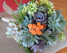 Colorful succulent bouquet with cascading senecio
