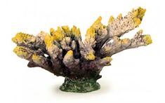 Rocks & Coral - Nerites Artificial Living Coral is an ideal Aquarium Decoration. This Replica Reef Coral is ideal for any aquarium.Nerites Artificial Living Coral - Our Nerites Artificial Living Coral is an ideal Aquarium Decoration.