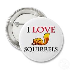 Squirrel Appreciation Day  January 21st.