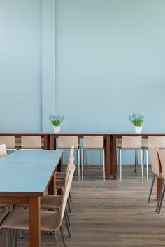 Hostel Stayokay Egmond #Netherlands pale blue, mixed timber, white pot, green plant